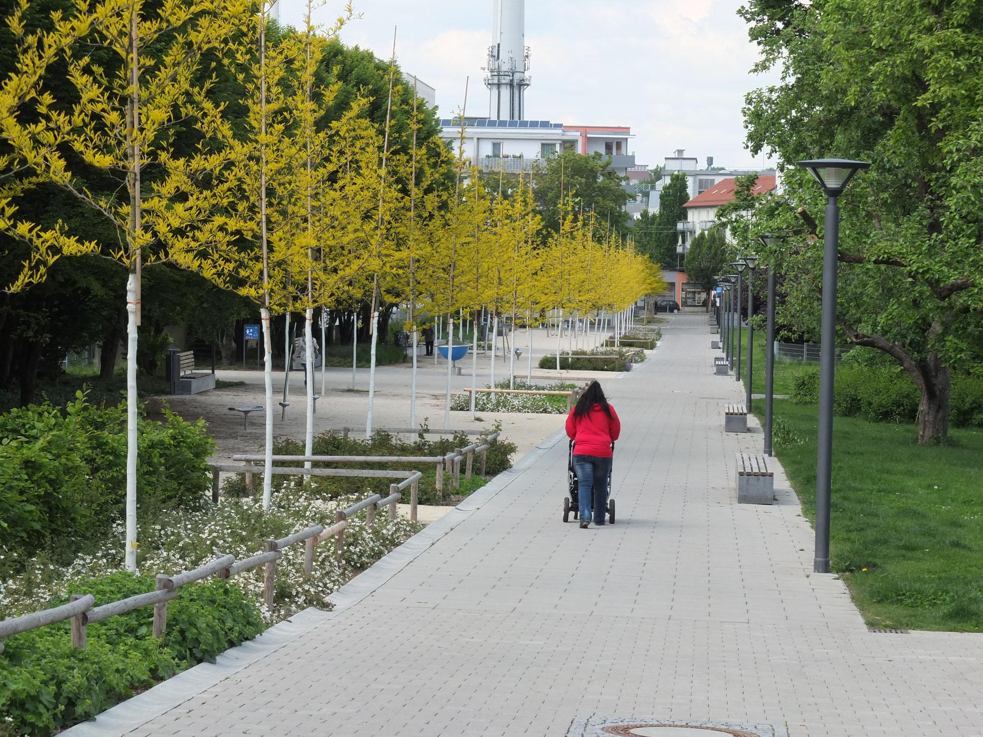 Ulm, Weststadt