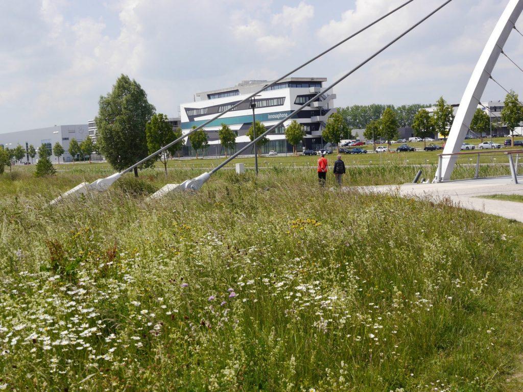 Böblingen/ Sindelfingen, Flugfeld