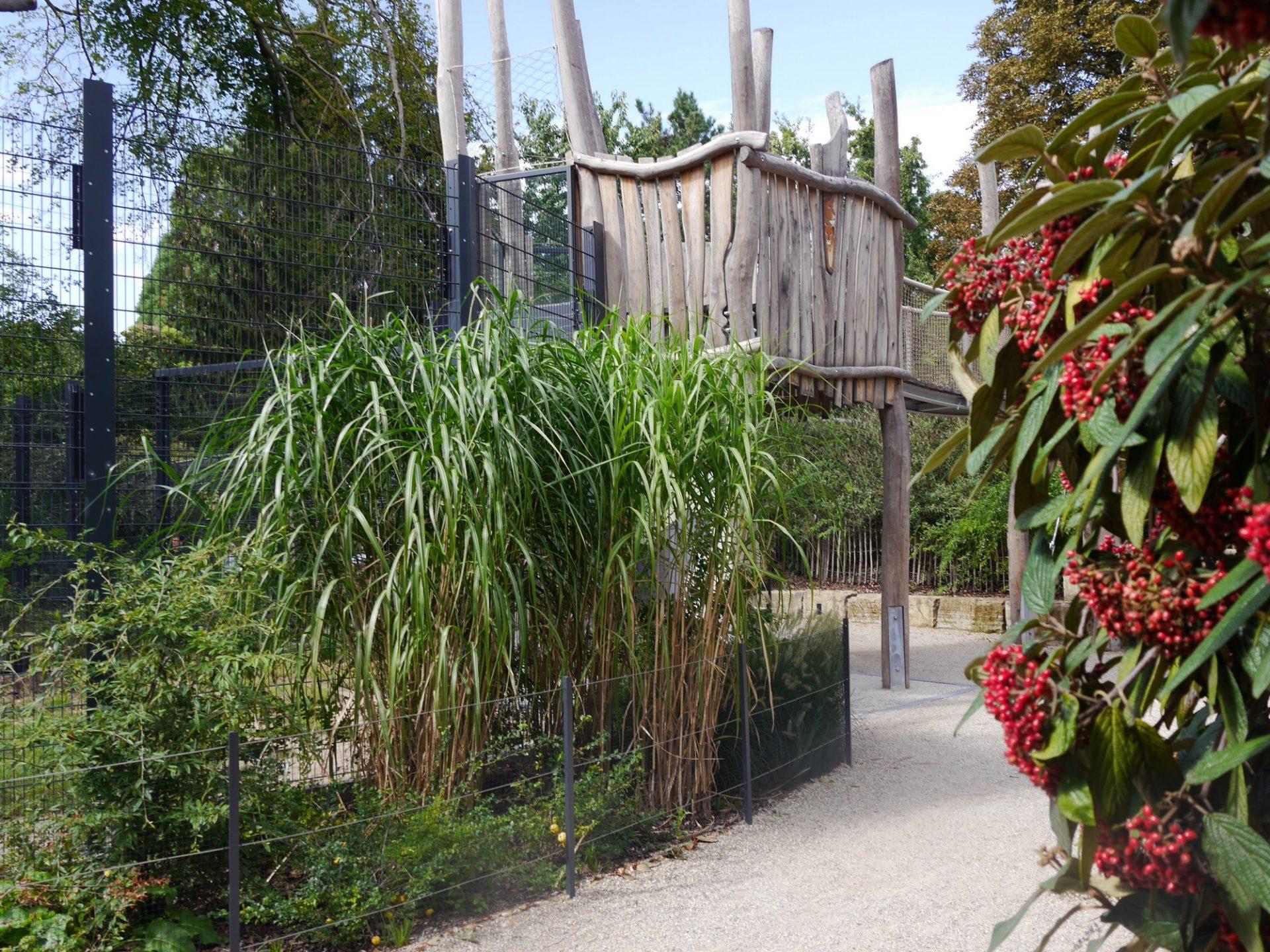 Heidelberg, Zoo