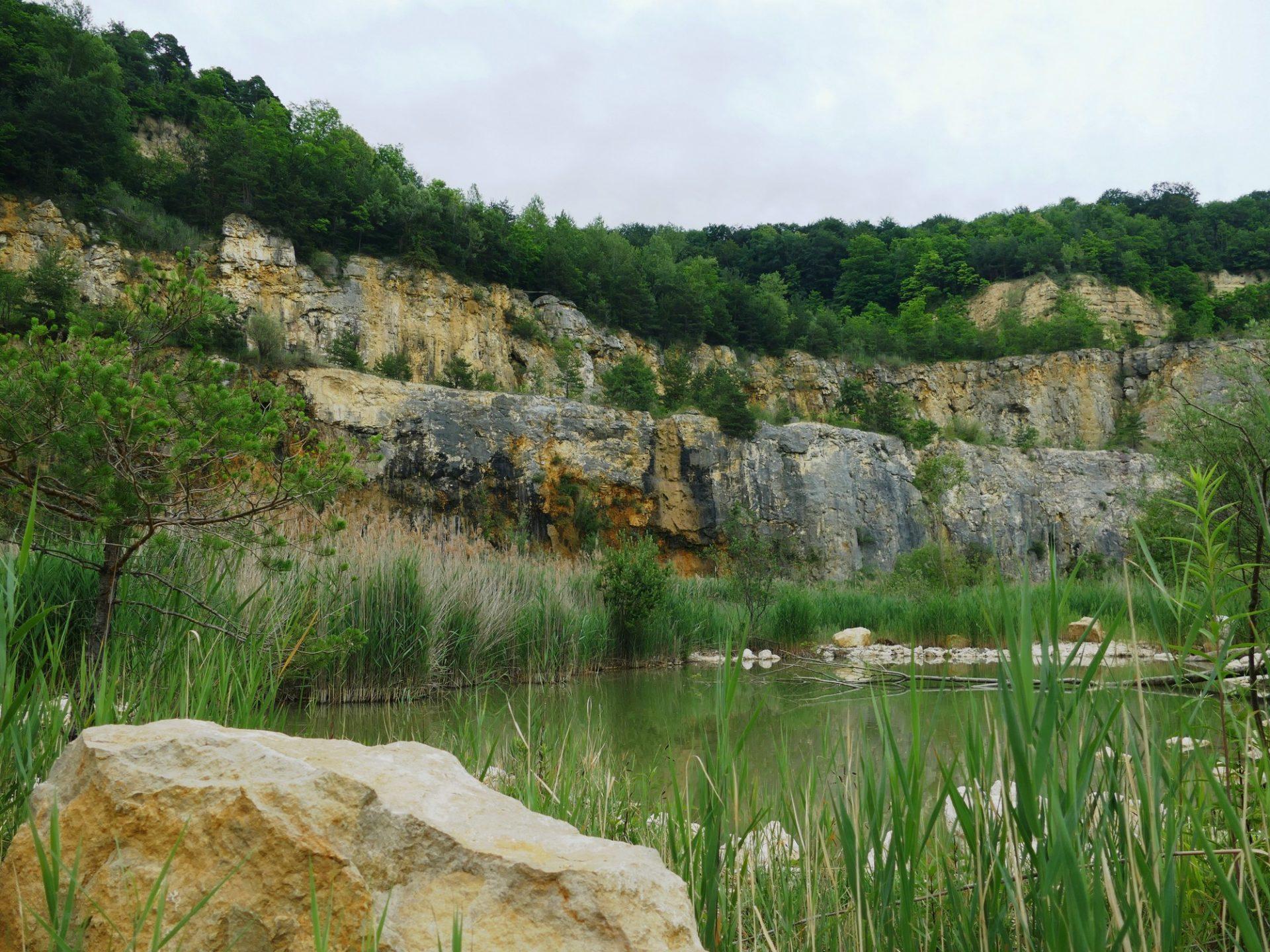 Kleinkems, Renaturierung Steinbruch
