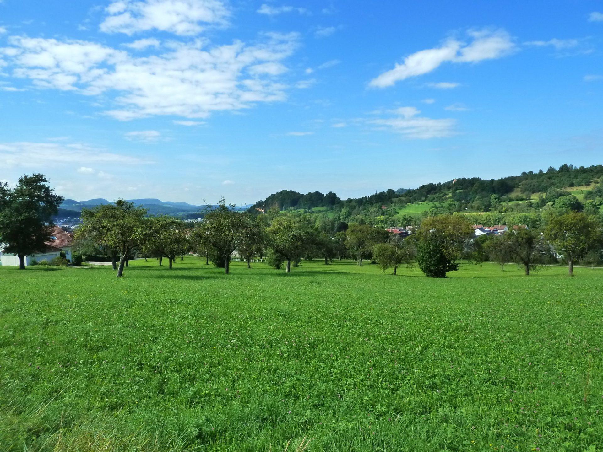 Mittlere Fils - Lautertal, Landschaftsplan